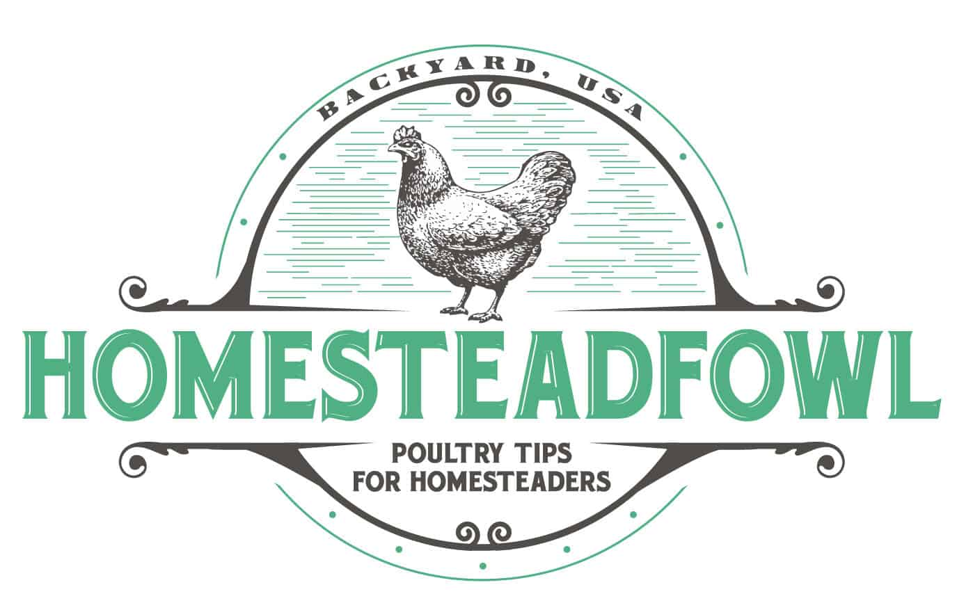 Homestead Fowl